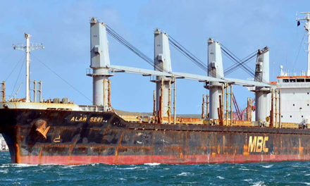 Bulker loses steering, may have grounded at Bluff