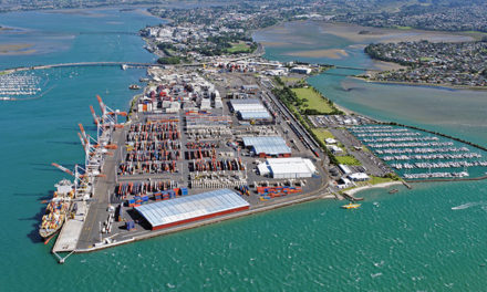 Bigger ships need bigger port infrastructure
