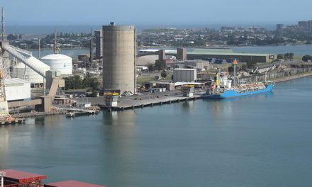 Port of Newcastle bulk terminal takes a step towards completion