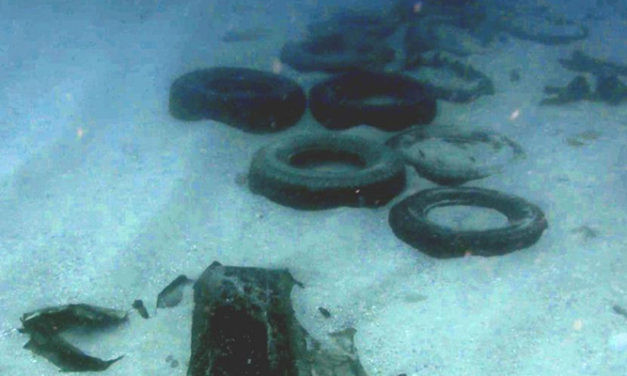 Car tyres and containers found from YM Efficiency