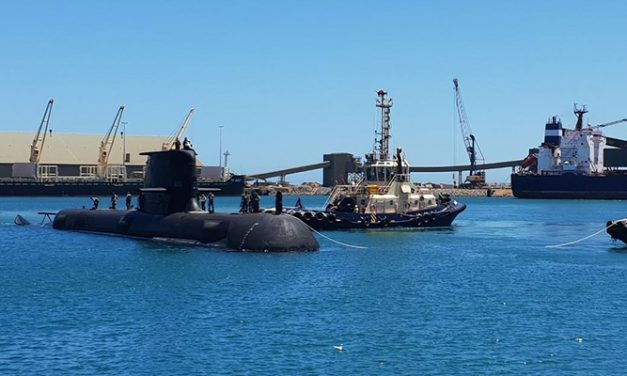 Unusual guest crashes Port of Geraldton's Australia Day festivities