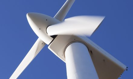 Government makes common cause with wharfies over wind project