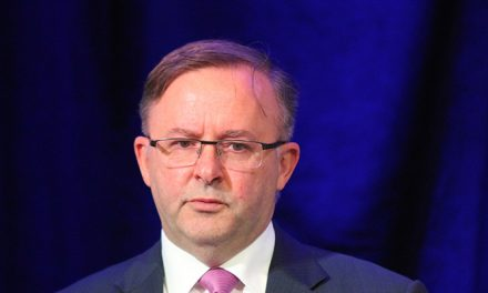 Albanese closer to leadership after Bowen withdraws