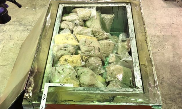Authorities bust ecstasy import effort