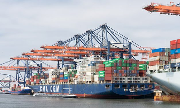 Big container growth reported at major Euro port