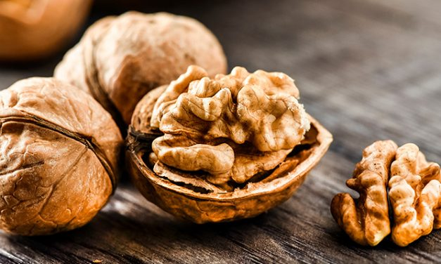 Nut trade to India excites minister