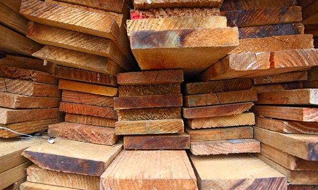 Report says wood trade surges