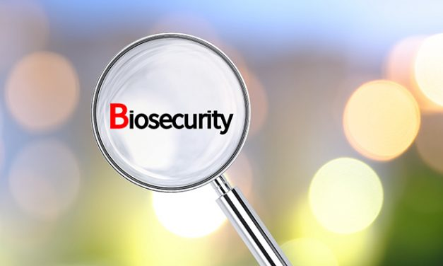 Biosecurity survey acts as first defence against marine pests