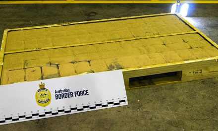 Large cocaine cargo hidden in shipping container