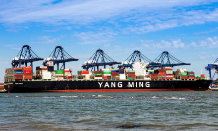 Yang Ming ship rescues two Australians at sea