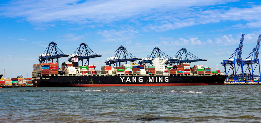 Shipping company criticised over Y M Efficiency clean-up
