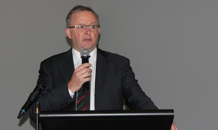 Albanese set to contest Labor leadership