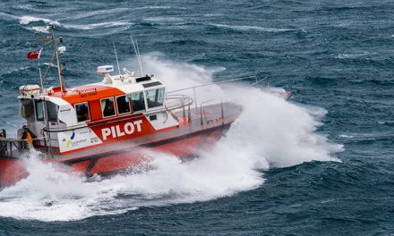 VIDEO: Pilot boards ship in large seas