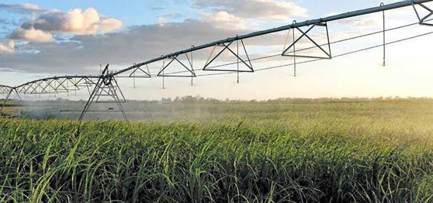 Mackay-Isaac-Whitsunday region aims to boost ag exports