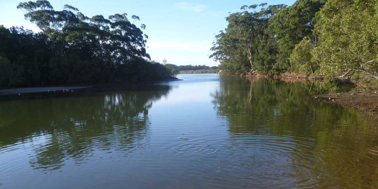 Gladstone Ports supports mangrove boardwalk construction