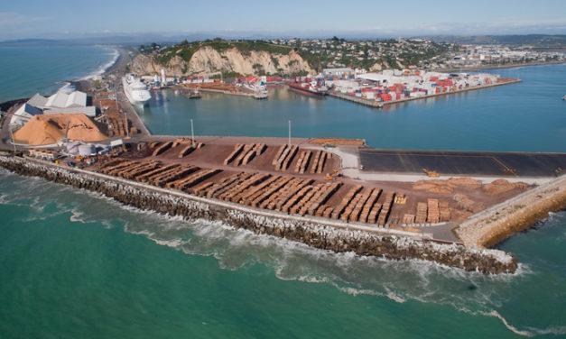 Napier monitors virus impact on log exports
