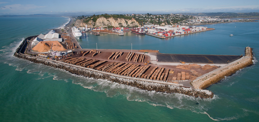 Napier monitors virus impact on log exports