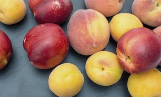 Rise in demand for Australian fresh fruit to the Philippines