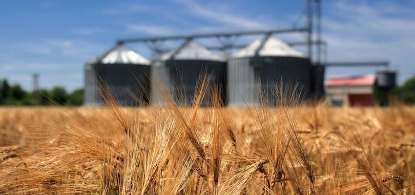 APEC workshop identifies future work on grain NTMs
