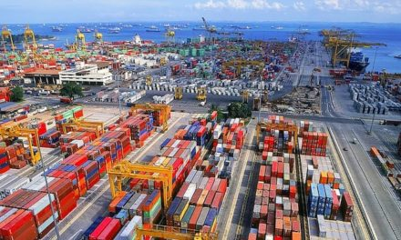 Singapore group's container throughput in 2019