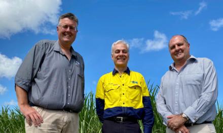 NQBP backs grower innovation to safeguard reef