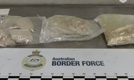Charges laid after MDMA seized from shipping container