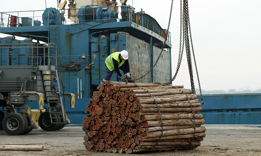 Ag Department seeks consultation on draft rules for wood and woodchip