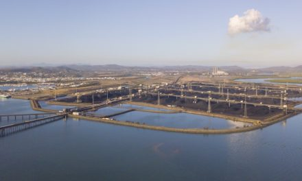 40 years of operation for Gladstone coal terminal