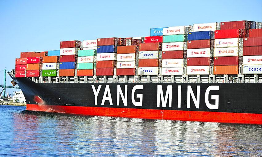 Yang Ming takes a first quarter buffeting