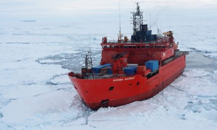 Last minute bid to save the Aurora Australis