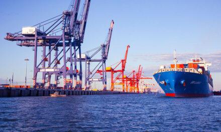 Container throughput at Brisbane up in June