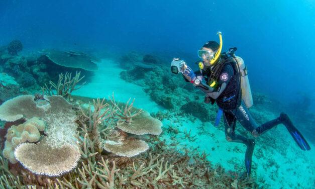 JCU and NQBP announce new era for marine partnership