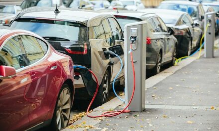 ALC calls for industry input to EV pricing system