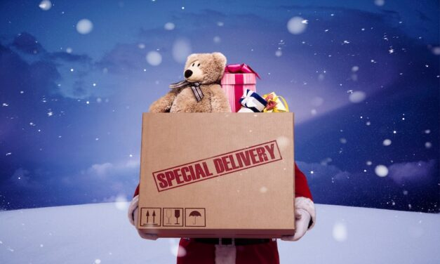 Shipping delays tipped to impact Christmas shopping
