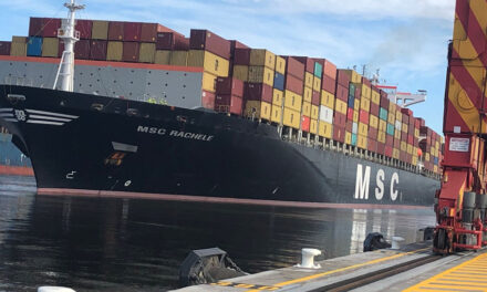 MSC announces new port rotations for Asia-Oceania