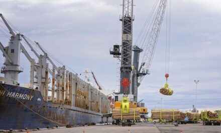 New remote-controlled cranes for Qube in NZ