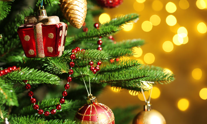 Merry Christmas and Happy New Year to all our readers