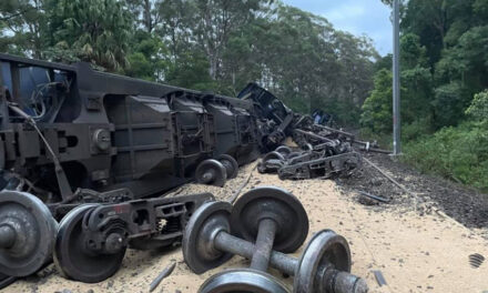 Grain train derails near Wollongong