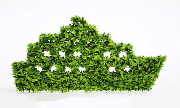More than 150 organisations call for shipping decarbonisation