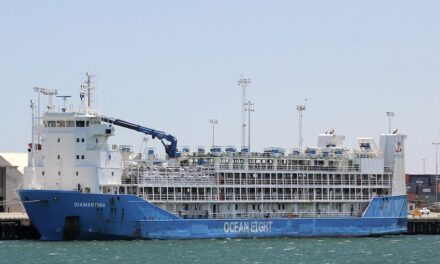 Livestock carrier crew in quarantine after positive COVID tests