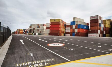 Shipping companies lead the fight against empty container build-up