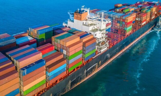 Pandemic exposes efficiency gap between container ports