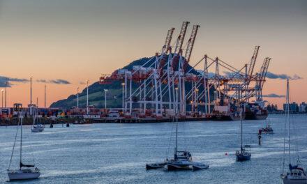 New Zealand upgrades FTA with China