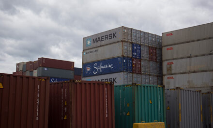 Freight Victoria to commence study into empty container management