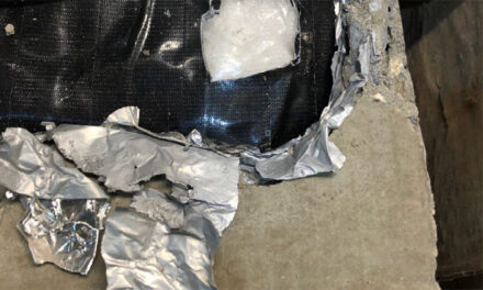 Two charged in air-cargo drug bust
