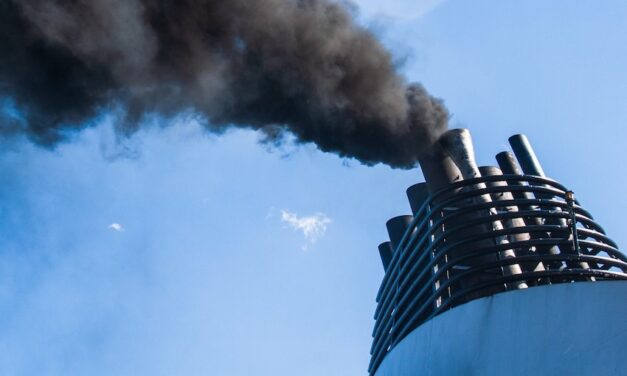 Shipping association highlights risks to zero emissions future