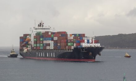 Group says container stack collapse can lead to PTSD