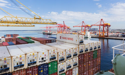 Botany container trade posts big gains in Feb