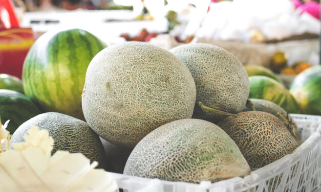 Queensland melons back on track to New Zealand