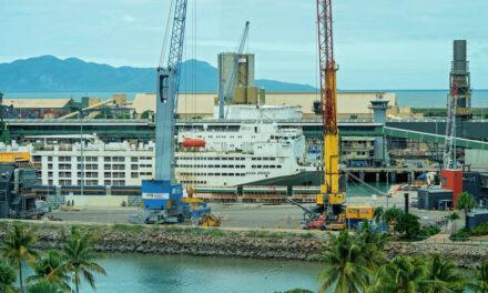 Live export firm Wellard posts dismal first-half results